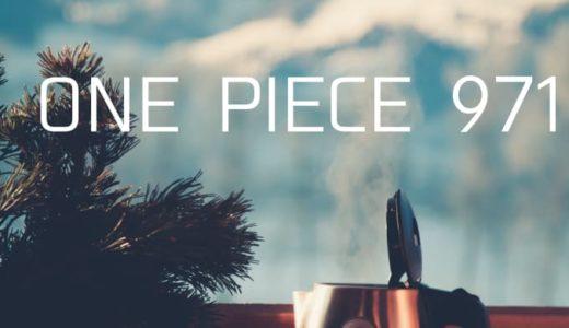 ワンピース ネタバレ 971話「釜茹での刑」5年前の約束がしのぶによって明かされる!