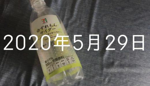 【2020年5月29日の日記】月間10万PVならびに月100記事更新達成したなり!