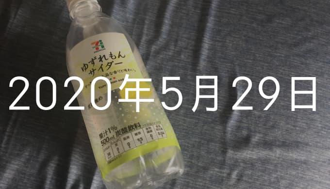【5月29日の日記】月間10万PVならびに月100記事更新達成したなり!