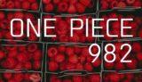ワンピース ネタバレ感想 最新話982話「無礼者 meets 無礼者」【カン十郎の報告に震えが止まらない将軍オロチ】