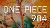 ワンピース ネタバレ感想 最新話984話「僕の聖書」【びっくり、ヤマトはおでんの意志を継ぐ絶世の美女だった!?】