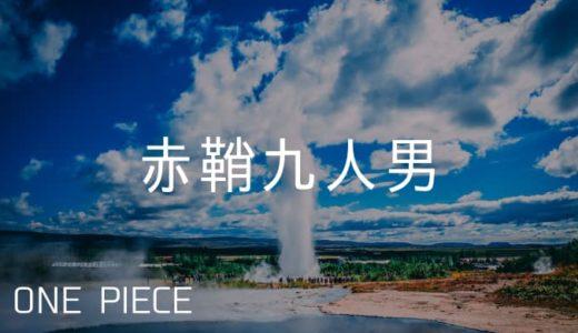 『ワンピース』赤鞘九人男