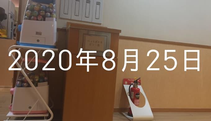 サウナマット交換を手伝うおじさん現る【8月25日の日記】