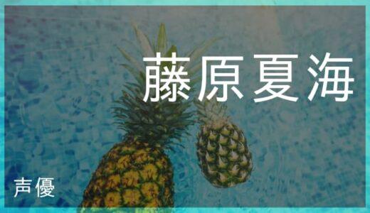 藤原夏海(ふじわら なつみ)